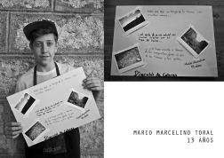 MARIO MARCELINO TORAL